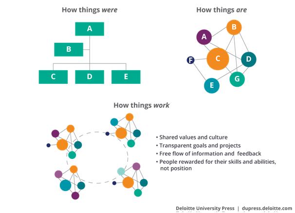 Deloitte_future Organization structure