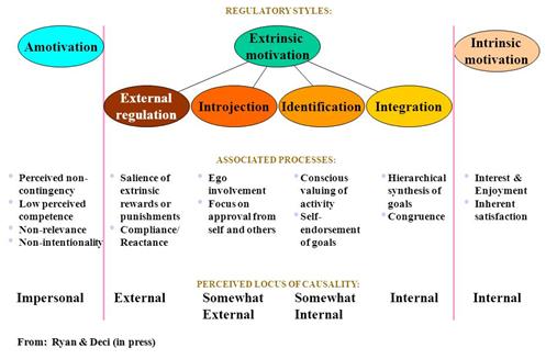 Regtech Culture (intrinsic and extrinsic motivation)